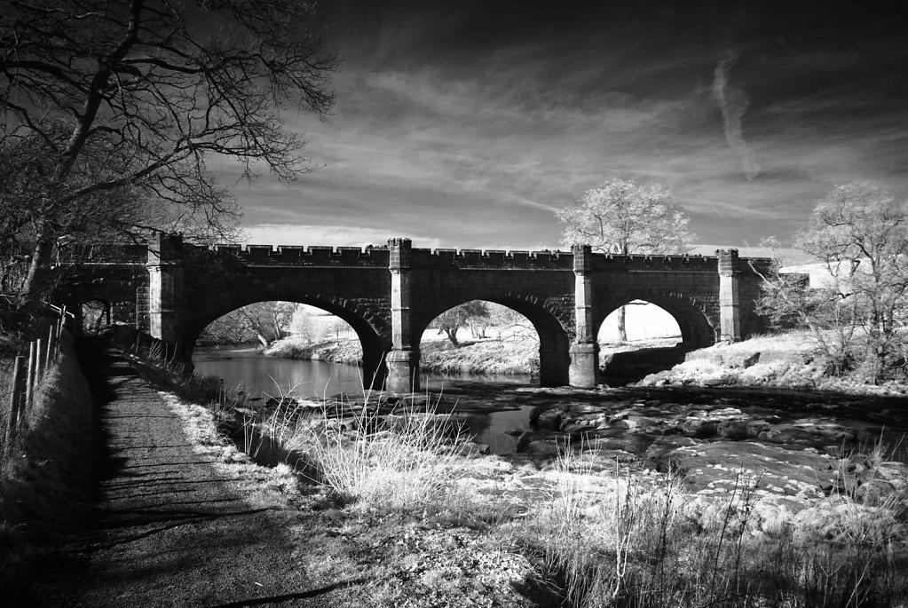 Bolton-Abbey-Nirkon-7382.jpg