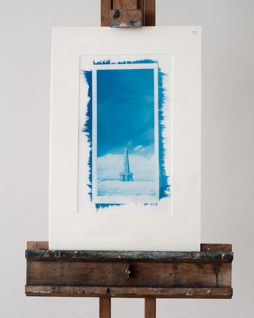 Print-for-sale-7501.jpg